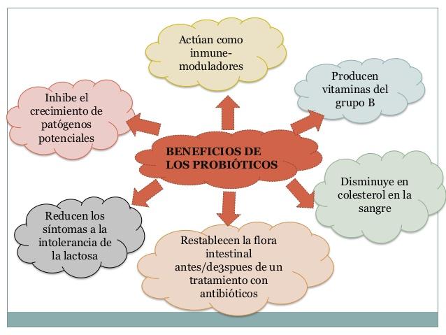 probioticos-1-5-638